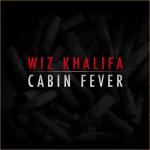 В ожидания «Cabin Fever 2» вспомним 1 часть Cabin Fever