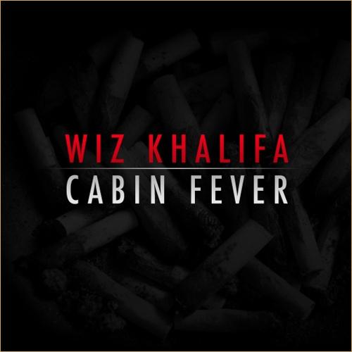 В ожидания Cabin Fever 2 вспомним 1 часть Cabin Fever