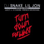 Lil Jon – Turn Down For What (Remix) (feat. Juicy J, 2 Chainz & French Montana)
